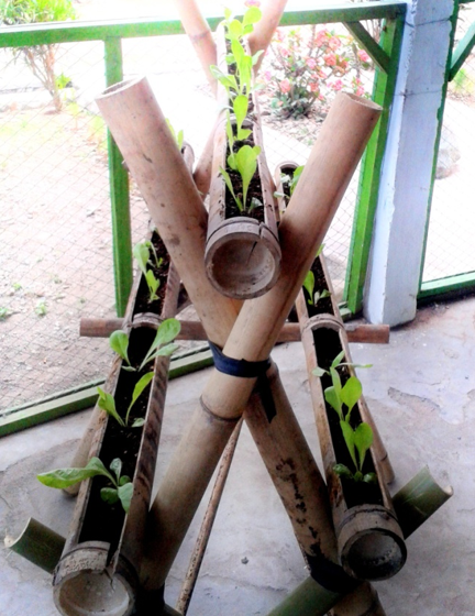 Mahasiswa KKN UTS Kelompok IX Menggelar Penyuluhan  Teknologi Hidroponik Di Desa Batu Tering
