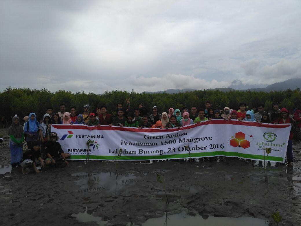 SOBI Sumbawa Tanam 1.500 Mangrove di Garis Pantai Sumbawa