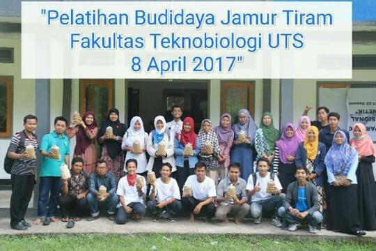 20 Peserta se-NTB Ikuti Pelatihan Budidaya Jamur Tiram CMF UTS